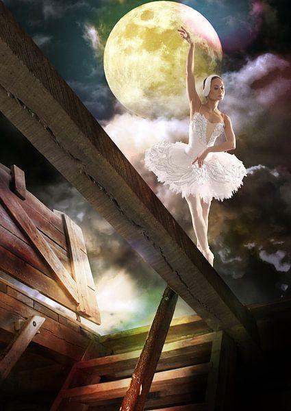Tanz auf dem Dachboden von Harald Fischer
