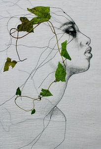 'Winde' van Kim Rijntjes