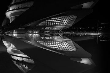 Opernhaus in Valencia von Rene Siebring