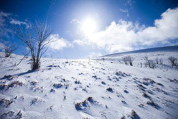 Winter in de Vogezen in Frankrijk sur Rosanne Langenberg