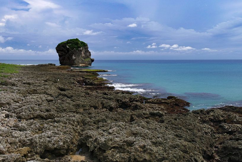 rots in de zee, zuid kust Taiwan van Eline Oostingh