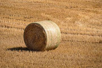 Gefreesd korenveld met grote ronde hooibalen in rijen van Harry Adam