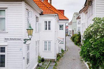 Straßen in Bergen (N) von Sam Mannaerts Natuurfotografie