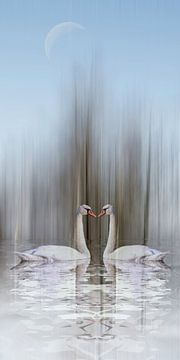 Swan Lake - Zwaan van liefde in de winter van Christine Nöhmeier