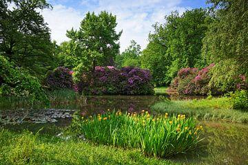 Breidings Garten - ein Park von Gisela Scheffbuch