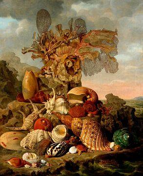 Schelpen en zeeplanten, Henricus Franciscus Wiertz