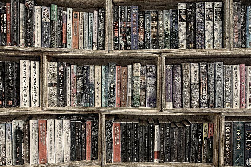 Boeken in boekenkast van Yvonne Smits