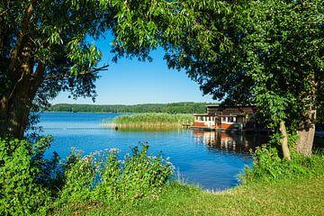 Landschaft am Kleinen Pälitzsee bei Pälitzhof von Rico Ködder