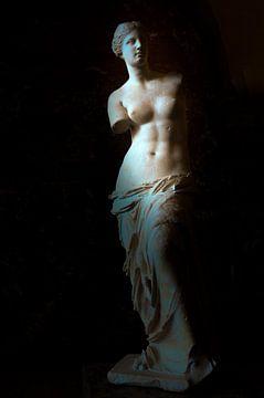 Venus de Milo von Jaco Verheul