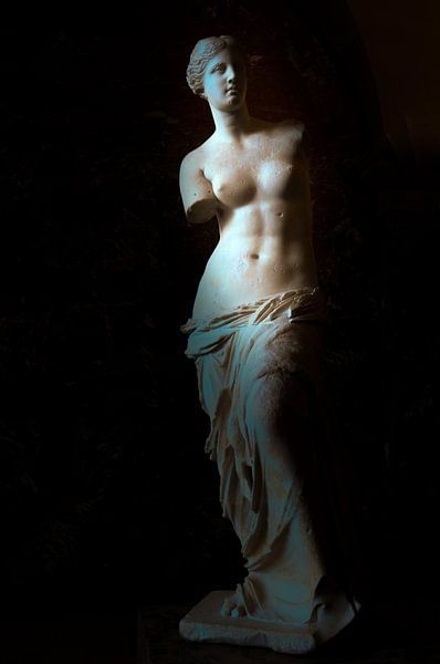 Venus de Milo van Jaco Verheul