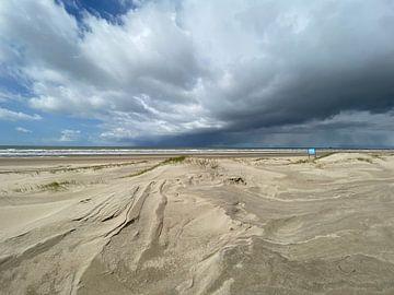 Strand Heemskerk (Noord-Holland) van Dutch Nature