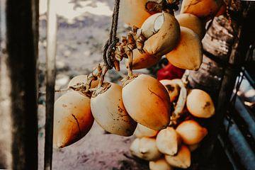 Noix de coco sur Fotoverliebt - Julia Schiffers