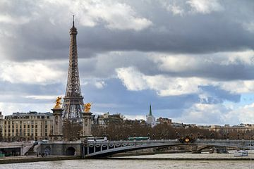 Eiffeltoren en de Alexandre III brug van Dennis van de Water