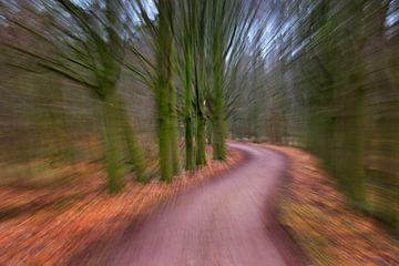 snel door het bos van Georges Hoeberechts