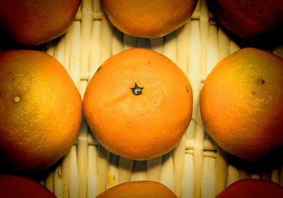 Mandarinen van Rosi Lorz