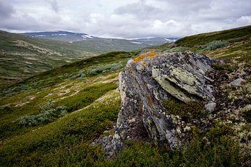 Norwegische Hochebene von Pieter Gordijn