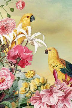 Birds from Paradise van Marja van den Hurk