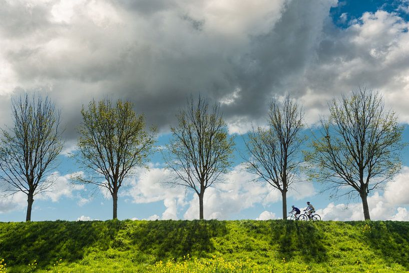 Fietsend Nederland van Brian Morgan