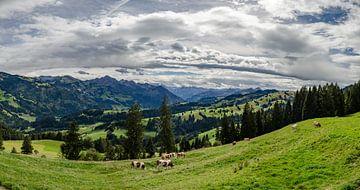 Uitzicht in Zwitserland van Marcel Pietersen