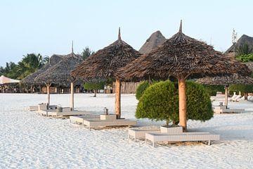 Sansibar Strandliegen von Robert Styppa
