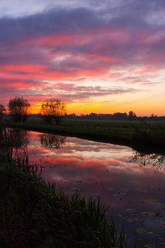 Zonsopgang in de polder