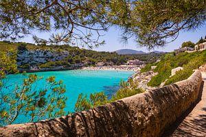 Wunderschöne Bucht van Bojan Radisavljevic