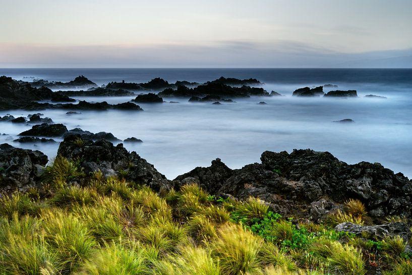 Felsenstrand mit Wasser und Gras bei kräftigem Wind von Ralf Lehmann
