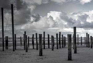 Strand Petten van Evert Middelbeek