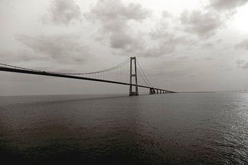 bridge van Nienke Stegeman
