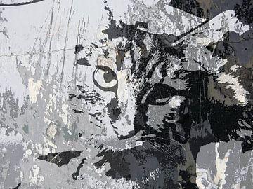 Kattenkunst - Diva 2 van