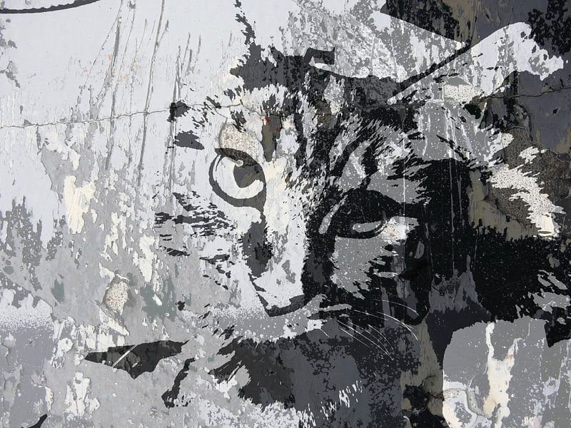 Kattenkunst - Diva 2 van MoArt (Maurice Heuts)