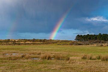 Regenboog boven de Amsterdamse Waterleidingduinen van Discover Dutch Nature