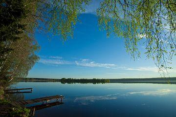De dageraad over het rustige wateroppervlak van het meer. Ochtendblauwe lucht, aan de oever van groe van Michael Semenov