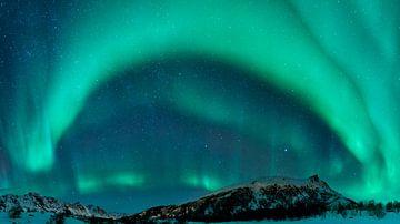 Lumières nordiques au-dessus des îles de Lofoten en Norvège