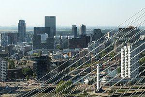 Het centrum van Rotterdam door de tuien van de Erasmusbrug