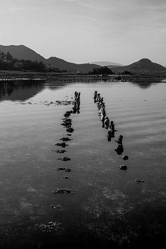 Sumbawa zeewierboerderij