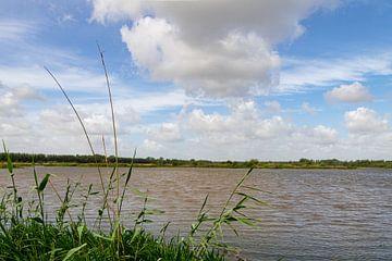 Hollandse lucht in de Biesbosch van Foto van Joyce