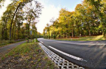 herfst plaatje langs de weg sur Pascal Engelbarts