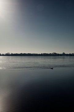 Winters zwemmen in Nannewiid von Rutger Hoekstra