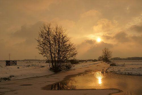 Krimpenerwaard in de winter