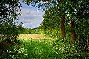 Verstopfungspfad über Felder und Wiesen von Jenco van Zalk
