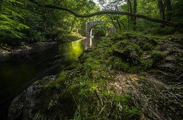 Pont en pierre ou en bois ? sur Joris Pannemans - Loris Photography