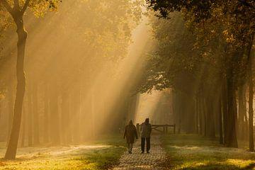 De wandeling, Doetinchem van Natuurlijk Achterhoek