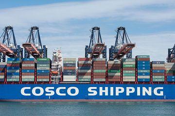 COSCO SHIPPING SCORPIOOne Minato kobe porte-conteneurs dans le port de Rotterdam sur Elles Rijsdijk