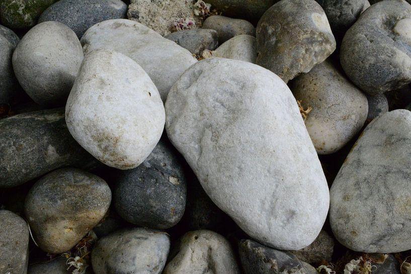 Rock or Stone van Alexander van der Dussen