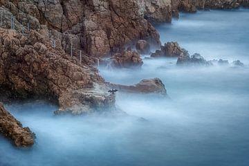 Cap d'Antibes von Yannick Lefevre