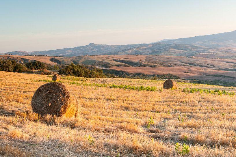 Hooibalen op de heuvels van Toscane van Damien Franscoise