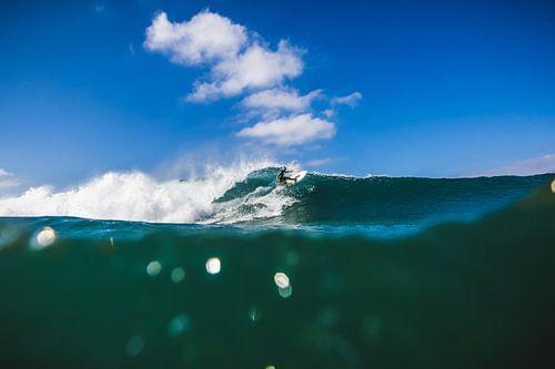 Surfen Cordoama van Andy Troy