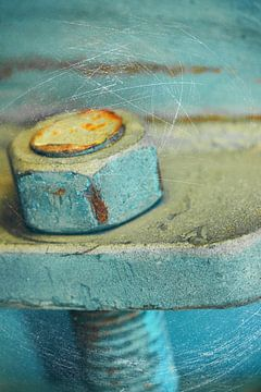 rostige Schraube - Rusty screw van Dagmar Marina