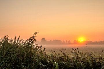 Sonnenaufgang_02 von Johan Honders